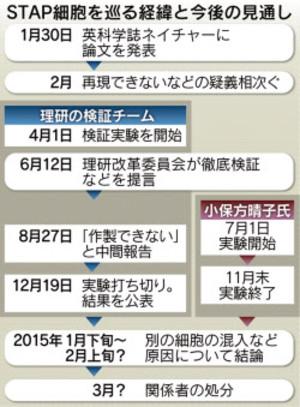 20141219nikkei_stap